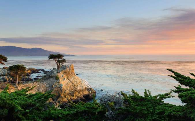 USA, California, Monterey Peninsula, 17 Mile Drive, Lone Cypress